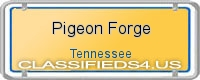 Pigeon Forge board